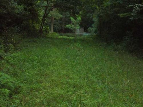 West Concannon Avenue Lot 1 : West Terre Haute : Vigo County : Indiana