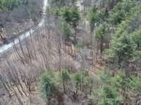 Large Wooded Country Building Lot : New Scotland : Albany County : New York