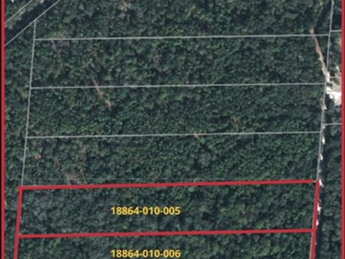 13.2 Acres- A-493 : Melrose : Alachua County : Florida