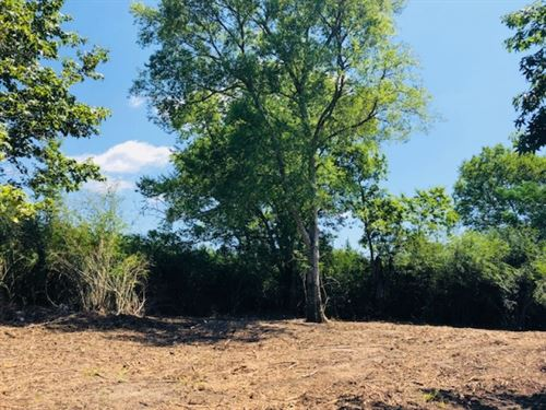 4.5 Acres Way Above Floodplain : Tylertown : Walthall County : Mississippi