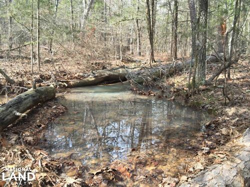 Burnt Ridge Rd Lake And Mountain Vi : Shirley : Van Buren County : Arkansas