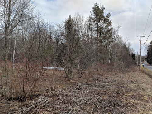 Double Road Frontage, Room To Build : Mexico : Oswego County : New York