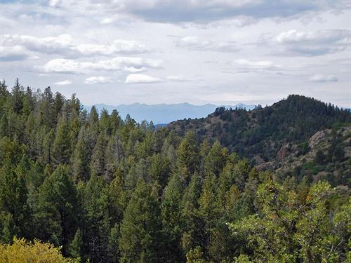 Government Land On Two Sides : Cripple Creek : Teller County : Colorado