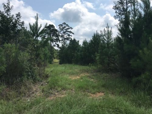 11 Acres On Hartwell Road In North : Summit : Pike County : Mississippi