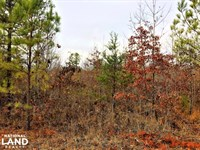2.02 Commercial Opportunity in Warr : Warrior : Blount County : Alabama