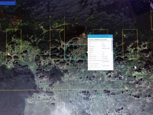 Remote 20 Acres Perfect For Fly-In : Kupreanof : Kodiak Island Borough : Alaska