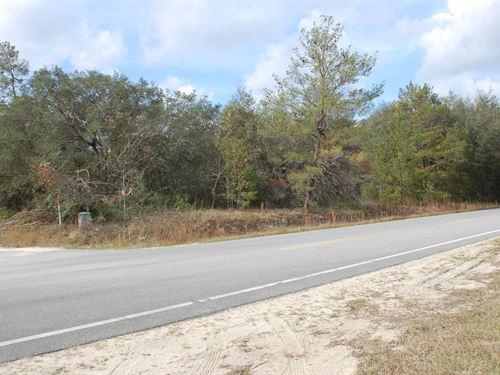 3.59 Home Site - A-557 : Hawthorne : Putnam County : Florida