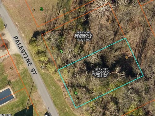 Beautiful Wooded Lot For Sale : Pierce Township : Clermont County : Ohio