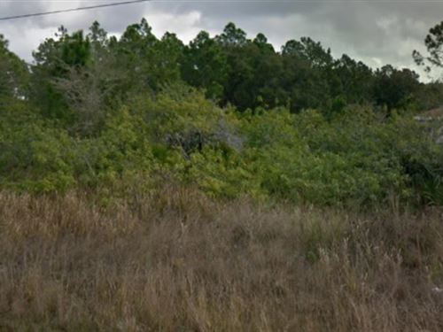 Lee County, Fl $29,999 Negotiable : Lehigh Acres : Lee County : Florida