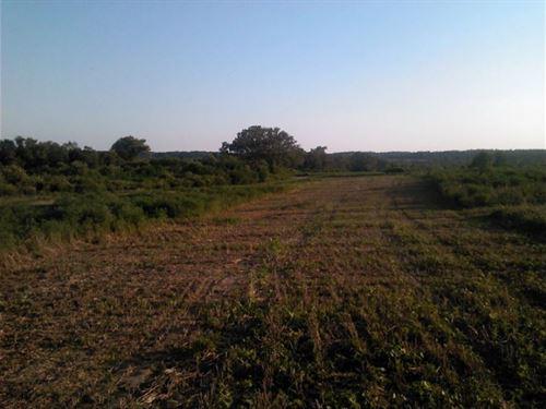 Owner Financing In Wagener, Sc : Wagener : Aiken County : South Carolina