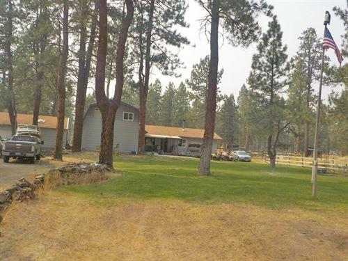 Great Horse Property : Bonanza : Klamath County : Oregon