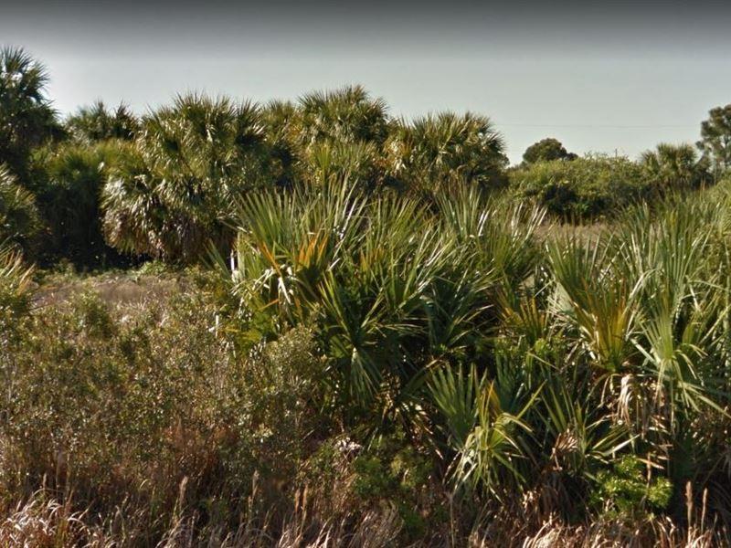 .23 Acres In Palm Bay, FL : Palm Bay : Brevard County : Florida