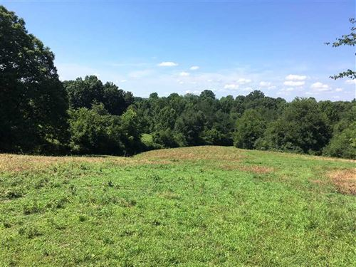 Beautiful Dickson County Home Sitt : White Bluff : Dickson County : Tennessee