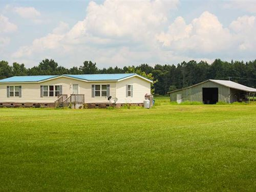 Reduced, 7 Acres of Residential : Columbia : Tyrrell County : North Carolina