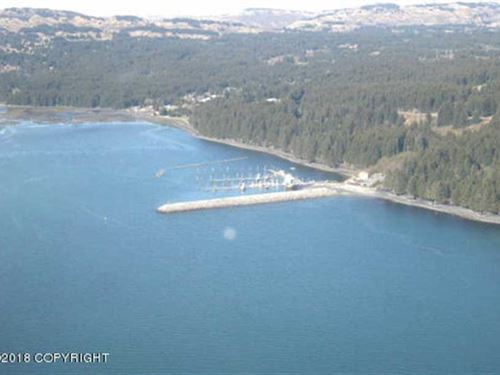 Port Lions Alaska on Kodiak Island : Port Lions : Kodiak Island Borough : Alaska