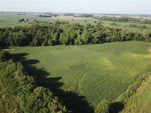 Lot 1, 12+ Acres Brookside Rd : Lapel : Madison County : Indiana