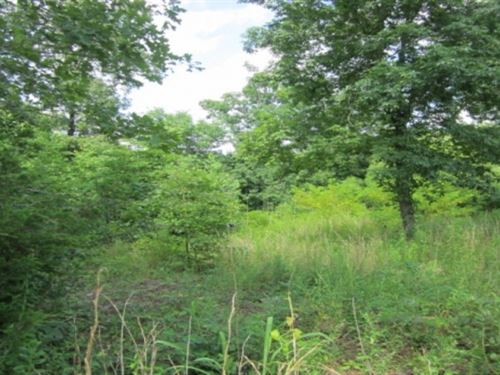 7.39 Acres In Union County, Ms : New Albany : Union County : Mississippi