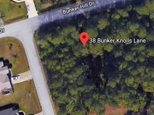 Two Wooded Lots For Sale $95,000 : Palm Coast : Flagler County : Florida