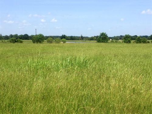 Great Building Site : De Kalb : Bowie County : Texas