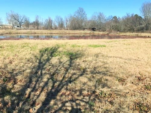Commercial Business Site With Pond : De Kalb : Bowie County : Texas