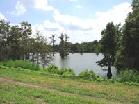 Bee Lake Bungalow Waterfront Lot 10 : Tchula : Holmes County : Mississippi