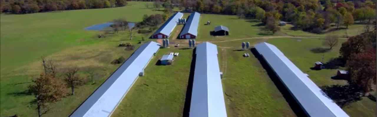 Chicken Farm For Sale Nw Ark : Gentry : Benton County : Arkansas