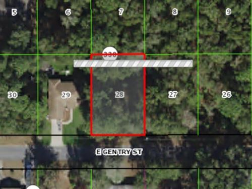 Wooded Lot For Sale $18,000 : Inverness : Citrus County : Florida