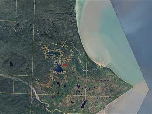 Remote And Awesome, This Area Is : Iliamna : Kenai Peninsula Borough : Alaska