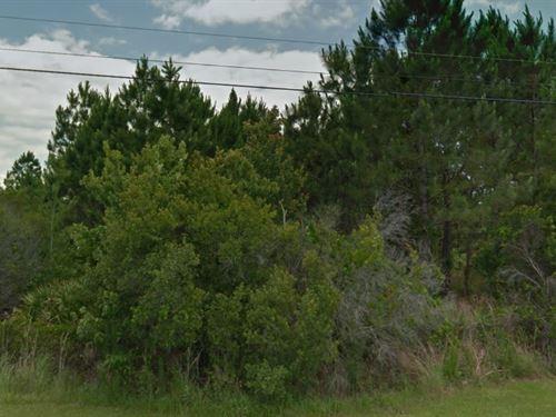 Polk County, Fl $13,500 Negotiable : Polk City : Polk County : Florida