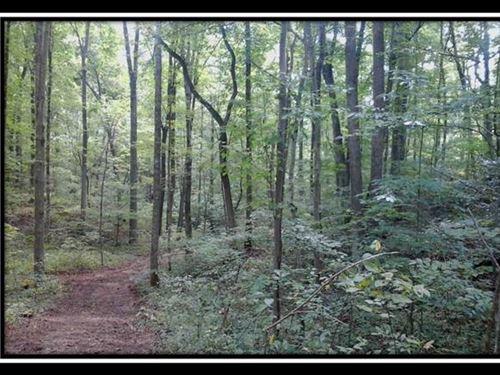 Bethel Ridge Tract 4 : Jackson : Ohio
