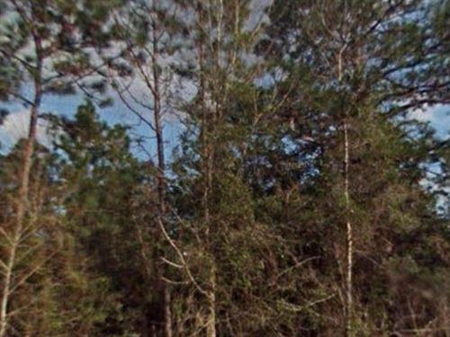 Marion County, Fl $32,500 Neg : Dunnellon : Marion County : Florida