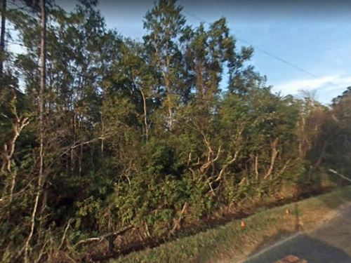 .22 Acres In Saint Augustine, FL : Saint Augustine : Saint Johns County : Florida