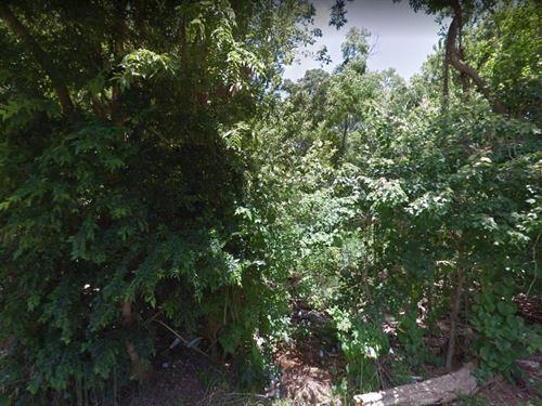 .23 Acres In Saint Augustine, FL : Saint Augustine : Saint Johns County : Florida
