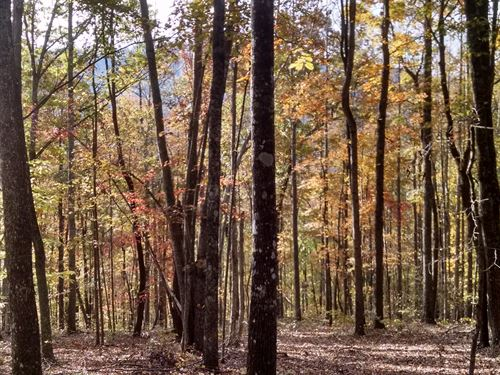 Rural North Carolina Mountains : Gilkey : Rutherford County : North Carolina