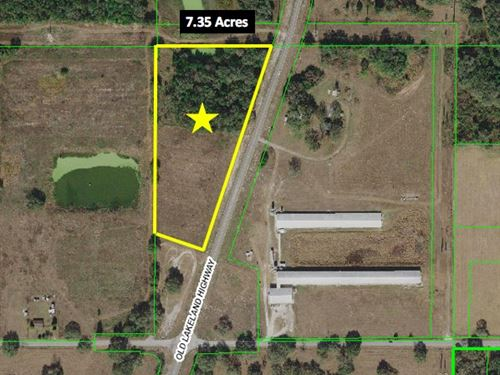 High And Dry Farm Land : Zephyrhills : Pasco County : Florida