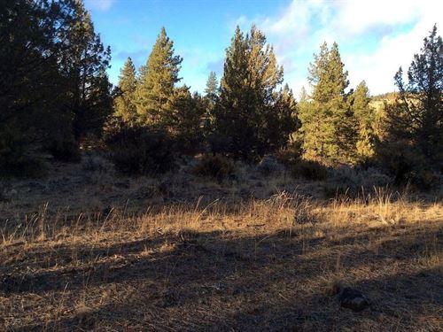 2.32 Acres In Beatty, OR : Beatty : Klamath County : Oregon
