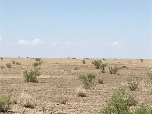 10 Acres In Saragosa, TX : Saragosa : Reeves County : Texas