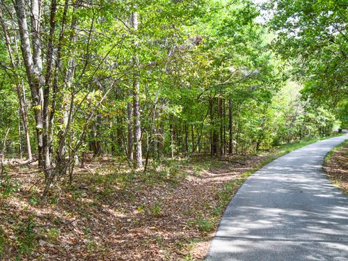 15 Acre Hardwood Tract Near Cowpens : Cowpens : Cherokee County : South Carolina