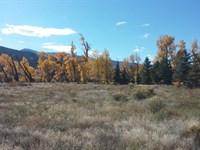 3 Golf Course Properties : South Fork : Rio Grande County : Colorado