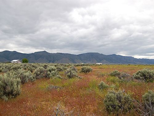 Spacious Lot In Northern California : Doyle : Lassen County : California