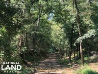 Florence Byram Rd 9.52 Acre Propert : Florence : Rankin County : Mississippi