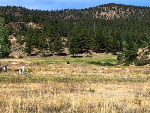 Fairway Glen, Lot 25 : South Fork : Rio Grande County : Colorado