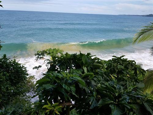 Sea Front Lodge 2 Cabinas Bluff : Mimitimbi Bluff : Panama