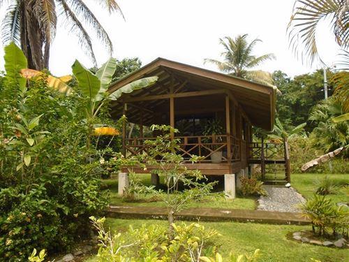 Adorable, Affordable Cabin Bocas : Carenero : Panama