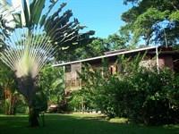 Dolphin Bay Titled Home 1.25 Acres : Bocatorito : Panama