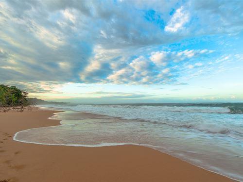 Titled Sand Beachfront Bocas Del : Bocas Del Toro : Panama
