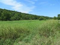 Creek Front Homesite : Clarkridge : Baxter County : Arkansas