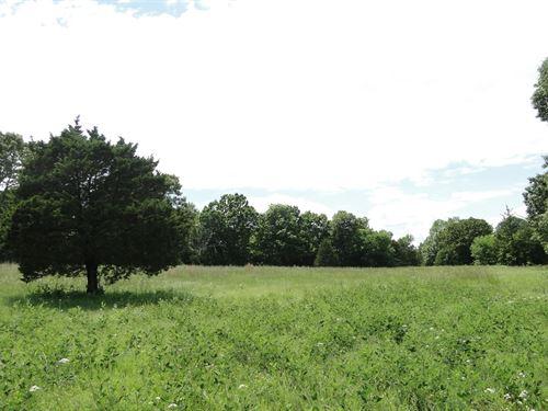 Land In Melbourne, Arkansas : Melbourne : Izard County : Arkansas