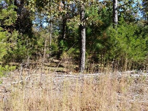 Land Close to Greer's Ferry Lake : Mountain View : Stone County : Arkansas