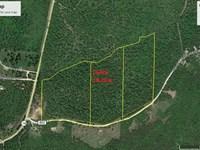 Country Living Bull Shoals Lake : Yellville : Marion County : Arkansas